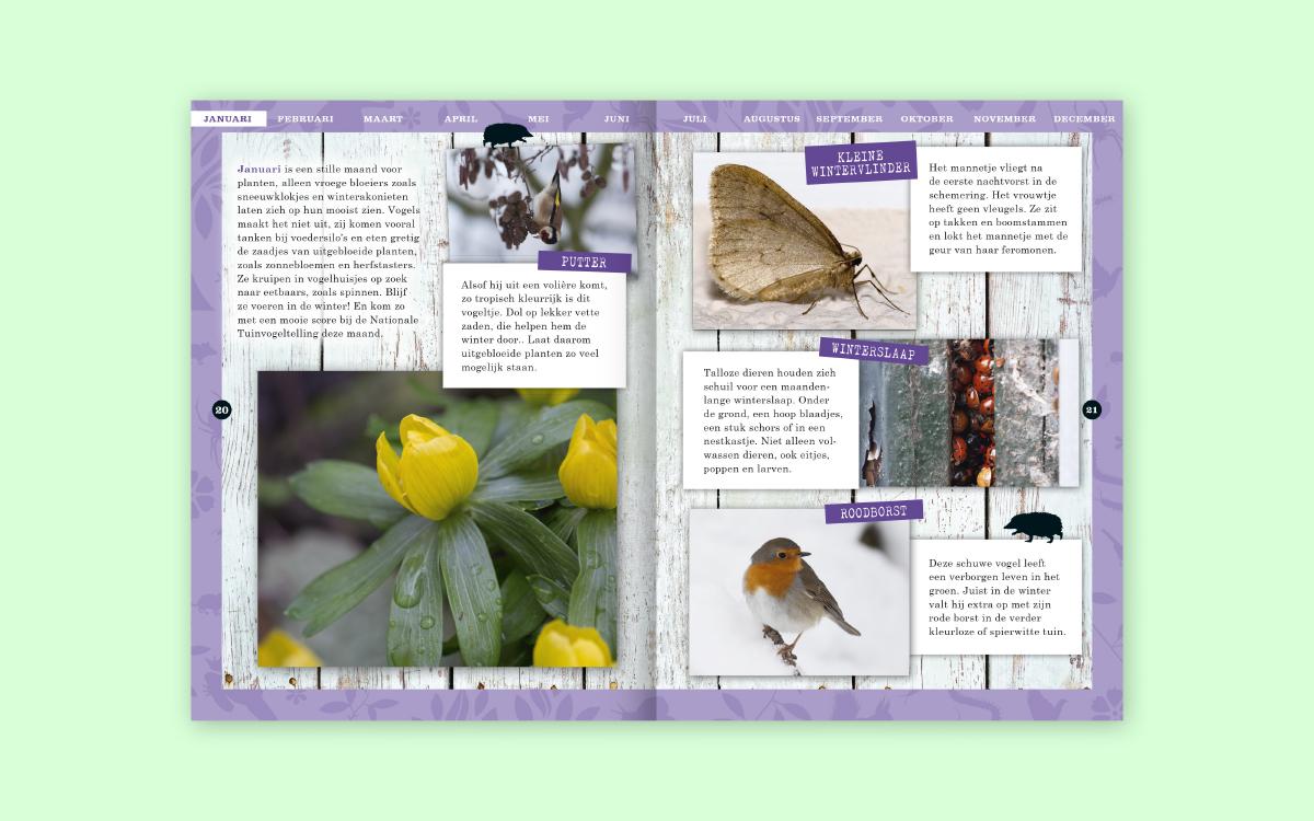 Ontwerp binnenwerk Verrassend vlakbij ontwikkeling uitwerking dtp vormgeving Tuindieren Vlinders&Libellen Vogels